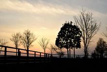 春の公園の夕暮れ