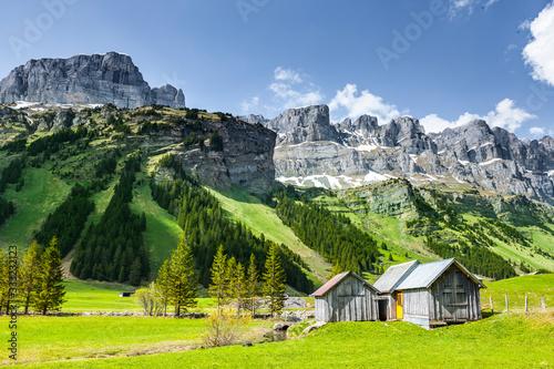 Wunderschöne Schweizer Berglandschaft im Fühling #333232123