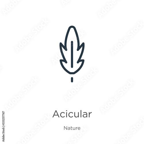 Photo Acicular icon