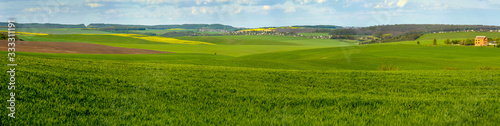 panoramic view of green field full of wheat, colorful slopes at spring time Fototapet