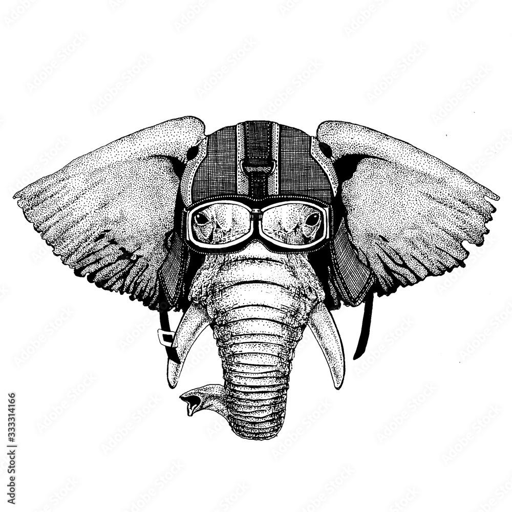 Fototapeta Elephant, indian or african elephant Hipster animal wearing motorycle helmet. Image for kindergarten children clothing, kids. T-shirt, tattoo, emblem, badge, logo, patch
