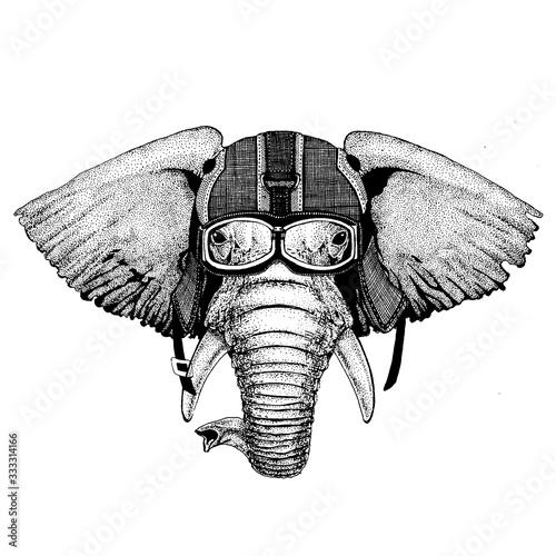Elephant, indian or african elephant Hipster animal wearing motorycle helmet. Image for kindergarten children clothing, kids. T-shirt, tattoo, emblem, badge, logo, patch Fototapete