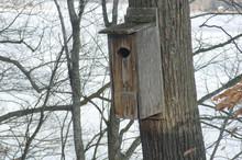 Wood Duck Nest Box