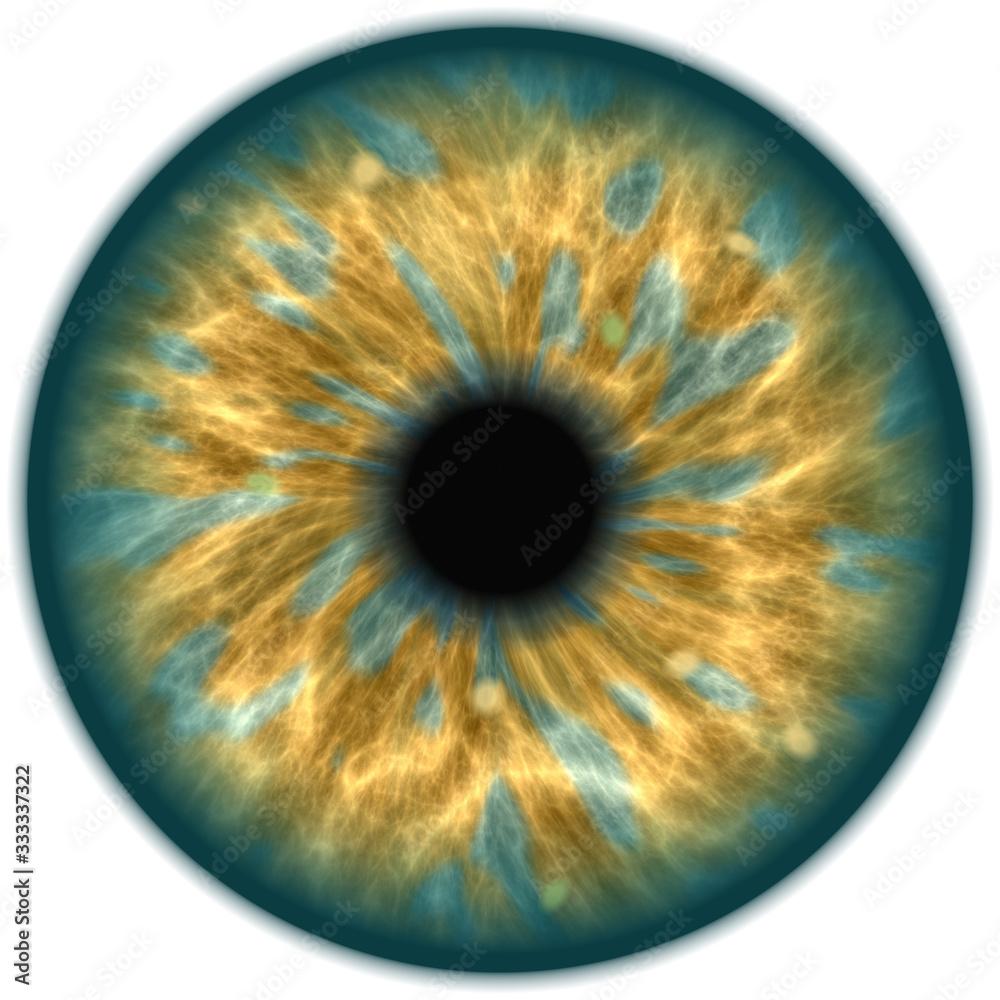 Fototapeta green isolated human eye iris