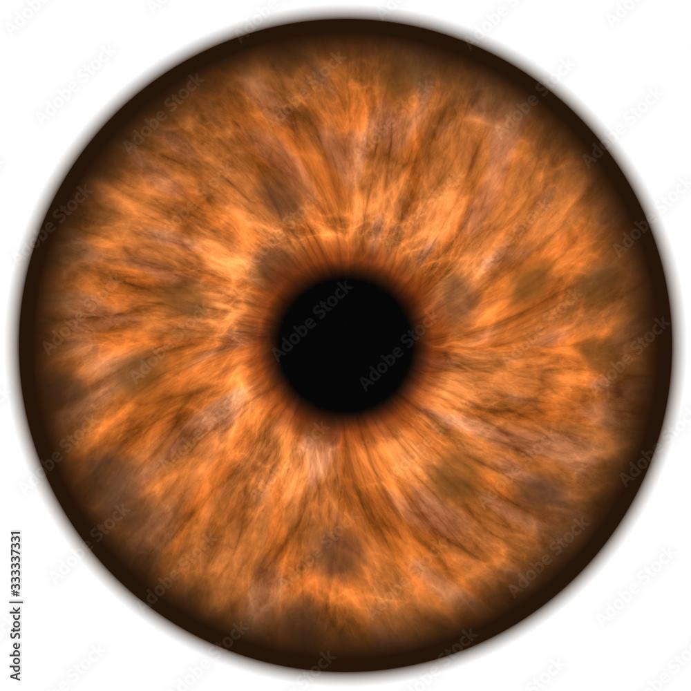 Fototapeta brown isolated human eye iris