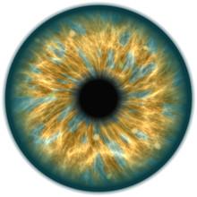 Green Isolated Human Eye Iris