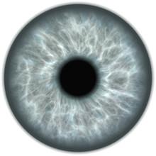 Grey Isolated Human Eye Iris
