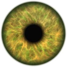 Jade Green Isolated Human Eye ...