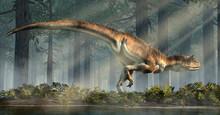 Carnotaurus Was A Carnivorous ...