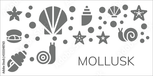Fotografiet mollusk icon set