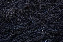 Black Background Of Burnt Gras...