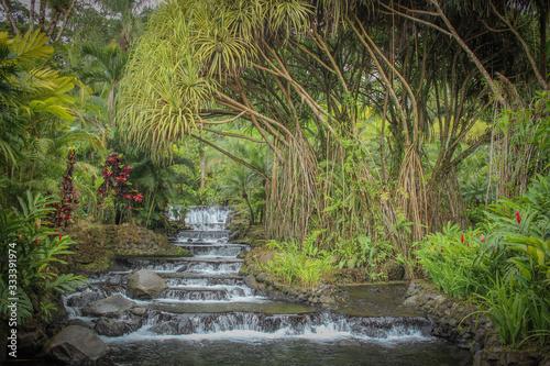 Sources d'eau chaude d'Arenal au Costa Rica Wallpaper Mural