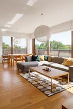 Gray Corner Sofa In Living Room