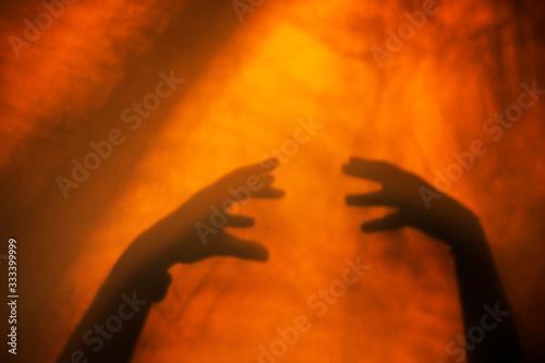 Photo Ombre chinoise, mains silhouette, coucher de soleil confinement