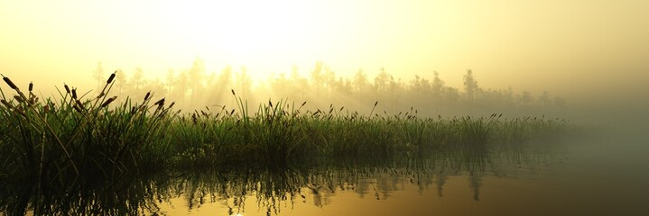 Panorama of the river bank at sunrise in the fog, the lake in the haze, morning in the swamp, 3D rendering