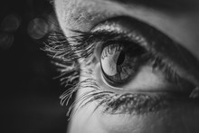 Black And White Macro Photo Eye Of A European Woman With Eyelashes, Pupil In A Low Key. Shine In The Pupil Of The Eye Close-up With Soft Focus.