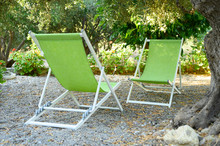 Two Empty Beach Chair Is Under Opposite Each Other The Shade Of Olive Trees In Backyard