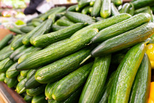 Sale Of Fresh Cucumbers. Fresh Green Cucumber Selling At The Market. A Lot Of Cucumbers