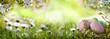 Leinwanddruck Bild - Easter eggs on spring meadow
