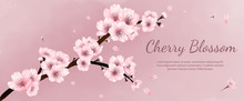 Banner Flowers Cherry Blossoms...
