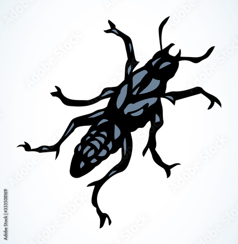 Photo Night butterfly. Vector drawing icon