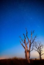Night Sky Full Of Stars Over A...