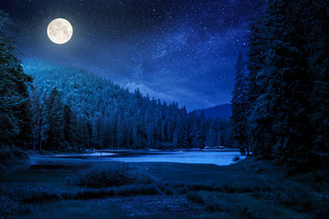 Obraz na Szkle Las lake summer landscape at night. beautiful scenery among the forest in mountains in full moon light