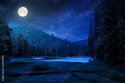 lake summer landscape at night Fototapet