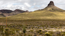 Oatman Highway In Arizona