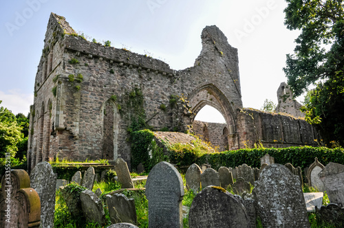 Ruins of Greyabbey Cistercian abbey-monastery Canvas Print