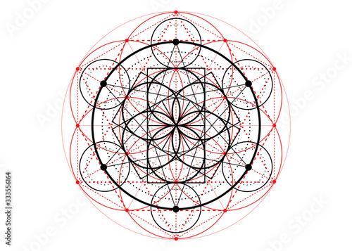 Leinwand Poster Seed of life symbol Sacred Geometry