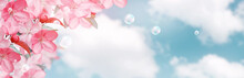 Pink Sakura Flowers And Soap Bubbles Against The Clouds Sky