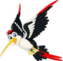 Cute Flying Black White Bird Cartoon