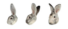 Grey Bunny Face Low Poly Trian...
