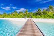 Beautiful tropical Maldives island with beach, sea and coconut palm tree with long jetty under blue sky for nature holiday vacation background concept