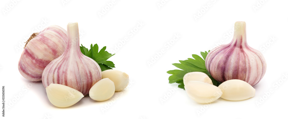Fototapeta Garlic with leaves of parsley isolated on white