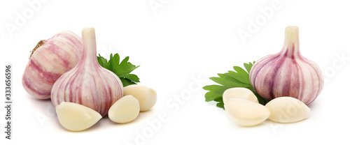 Fototapeta Garlic with leaves of parsley isolated on white obraz