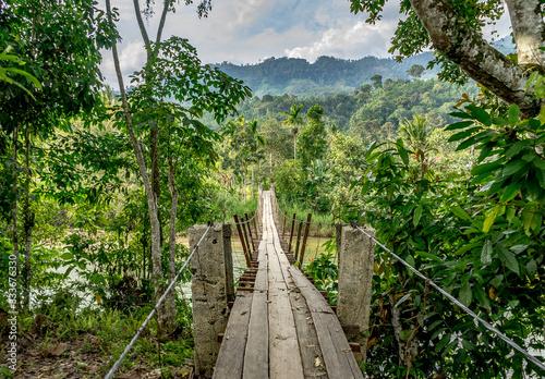 Fototapeta premium Drewniany most wiszący w niesamowitej dżungli Bukit Barisan Leuser