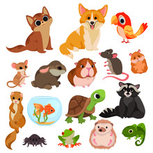 Set Of Cartoon Pets. Collectio...