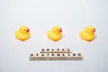 Yellow Rubber Ducks With Socia...