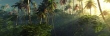 Sunrise In The Jungle, Palm Tr...