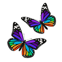 Set Of Two Rainbow Butterflies...