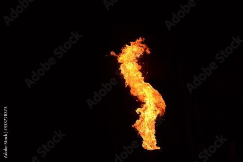 Flamme Canvas Print