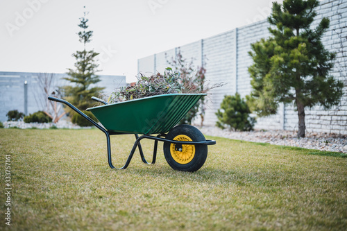 Papel de parede Green wheelbarrow in the garden