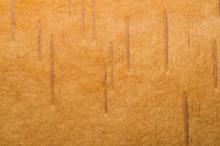 Birch Bark Texture Close Up. Wooden Background