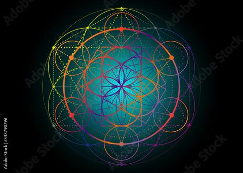 Fotografie, Obraz Seed of life symbol Sacred Geometry