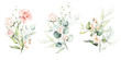 Watercolor floral illustration set - flower and green leaf branches bouquets collection, for wedding stationary, greetings, wallpapers, fashion, background. Eucalyptus, olive, green leaves, etc.