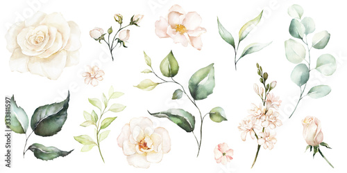 Fotografia Watercolour floral illustration set