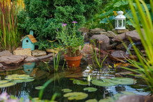 Beautiful Artificial Pond For ...