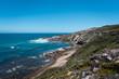 Sunny ocean coast landscape
